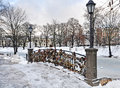 Snow In The Park Royalty Free Stock Image - 48746006