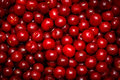 Red Cherry Royalty Free Stock Photo - 48759715