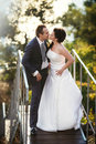 Bride And Groom On Ladder At Wedding Walk. Royalty Free Stock Photos - 48761918
