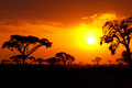 African Sunset Royalty Free Stock Photo - 48805655