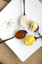 Variety Condiments On Spoon Stock Image - 48813161