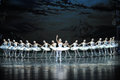 The Swan And The Prince Is A Fairy Tale-The Swan Lakeside-ballet Swan Lake Stock Photography - 48876882