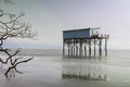 Cabin On Hunting Island Royalty Free Stock Photos - 48878958