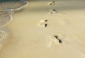 Foot Prints In The Sand Royalty Free Stock Photo - 48888625