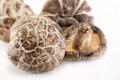 Dried Mushrooms Royalty Free Stock Images - 48903739