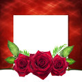 Valentine With Red Roses, White Background Royalty Free Stock Images - 48909229