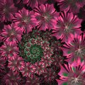 Spiral Flower Background. Pink Palette. Computer Generated Graph Royalty Free Stock Photos - 48931748