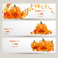 Modern Vector Set Of Colorful Autumn Leaves And Pumpkins BannFlat Style Website Design With Green Apple Illustration, Vector EPS10 Stock Photography - 48991712