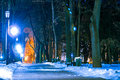 Park At Night In Winter Royalty Free Stock Images - 49008879