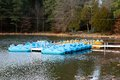 Paddle Boats In The Recreational Area At A Lake Royalty Free Stock Photos - 49075508