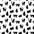 Seamless Pattern Black Cats Silhouettes On White Background. Vector Royalty Free Stock Photos - 49078128