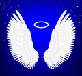 White Angel Wings Stock Photos - 49078173