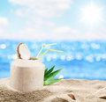Young Coconut In The Sand At The Beach. Stock Images - 49098104