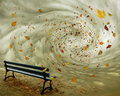 Fantasy Bench In Autumn Royalty Free Stock Photo - 49107715