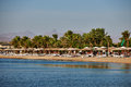 Beach On The Red Sea Stock Image - 49110211