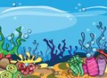 A Vector Illustration Of Marine Underwater Scene Stock Photography - 49210852