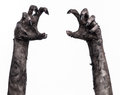 Black Hand Of Death, The Walking Dead, Zombie Theme, Halloween Theme, Zombie Hands, White Background, Mummy Hands Stock Image - 49232941