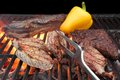 Mixed Roasted Meat On The BBQ Grill Stock Image - 49285521