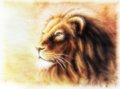 Lion Painting  Fractal Filtered Image Of A Lion Royalty Free Stock Photo - 49333005