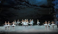 Moonlight Night-The Last Scene Of Swan Lake-ballet Swan Lake Stock Images - 49333694