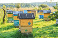 Summer Apiary With Several Hives Stock Images - 49364614