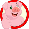 Cartoon Pig Mascot Royalty Free Stock Image - 49367016