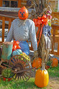 Pumpkins At A Fall Festival. Stock Photo - 49393570