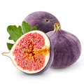 Fig Royalty Free Stock Image - 49397976