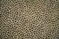 Leopard Skin Pattern Royalty Free Stock Photos - 4941278