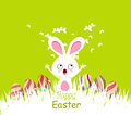 Happy Easter Cards With Eggs And Bunny Stock Images - 49404684