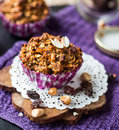 Vegan Muffins With Oat Flakes With Raisins And Nuts Royalty Free Stock Image - 49426226
