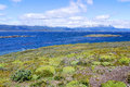 The Beagle Channel Stock Photography - 49437512