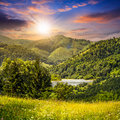 Pine Trees Near Meadow In Mountains At Sunset Royalty Free Stock Image - 49472646