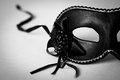 Venetian Carnival Mask Stock Photo - 49537580