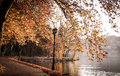 A Walk In Autumn Next To A Lake Stock Images - 49545894