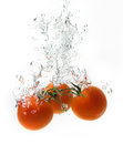 Tomatoes Royalty Free Stock Photography - 49552697