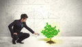 Business Man Watering A Growing Green Dollar Sign Tree Royalty Free Stock Images - 49584039