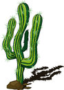 Cactus Doodle Royalty Free Stock Photography - 49619917