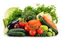 Assorted Raw Organic Vegetables On White Stock Photos - 49629103