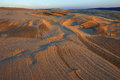 Silver Lake Sand Dunes Royalty Free Stock Images - 49656869