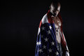 Muscular Man Wrapped In The American Flag With Copy Space Stock Photo - 49686850