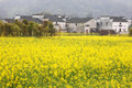 Country View In Wuyuan Royalty Free Stock Photography - 4972867