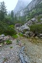 Great Cold Valley Summer View (High Tatras, Slovakia). Stock Image - 49705601