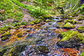 River Flowing Through A Gorge Royalty Free Stock Photos - 49706748