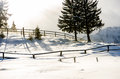 Shades Of Winter Stock Image - 49720371