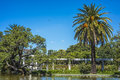 Palermo Woods In Buenos Aires, Argentina. Stock Photo - 49724510