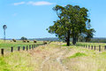 Australian Rural Field Landscape With Haystacks Royalty Free Stock Image - 49750366