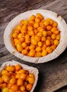 Sea Buckthorn Stock Images - 49778384