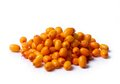 Sea Buckthorn Stock Photography - 49778472