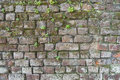 Background Of A Brick Wall With Moss And Weeds Royalty Free Stock Images - 49822979